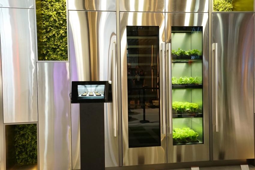 LG sukūrė pirmąjį prietaisą, skirtą daržovėms auginti namuose